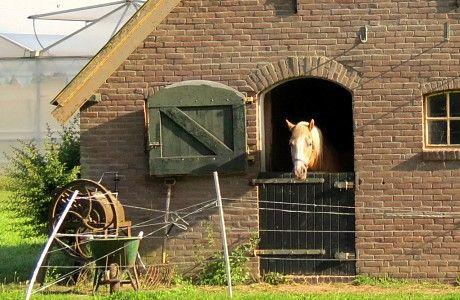 Foto van de dag - 50plusser.nl