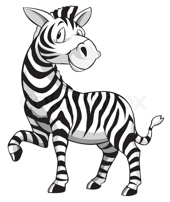 Zebra Cartoon | Vector | Colourbox