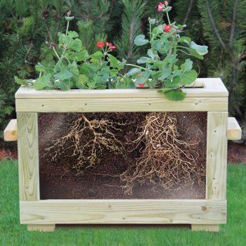 Outdoor EYR Resource For Gardening And Growing Cycles