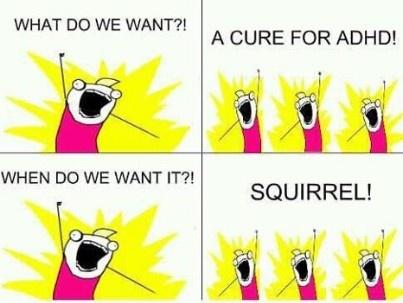 ADHD comic. SQUIRREL!