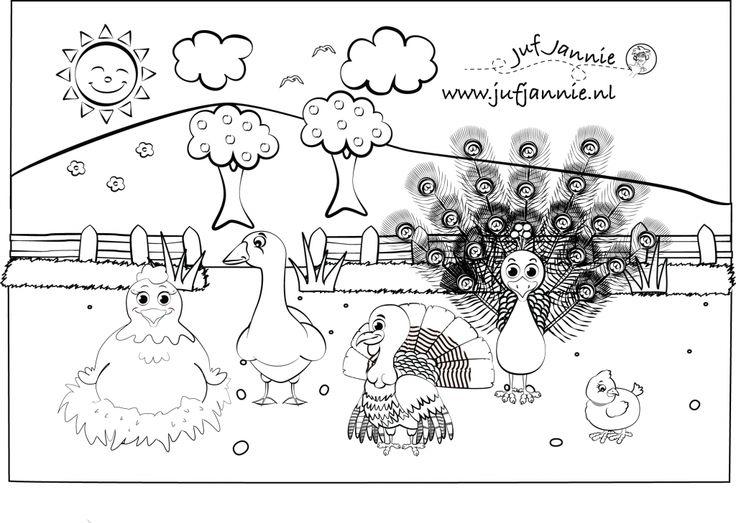 kleurplaten kinderboerderij: kip, gans, kalkoen, pauw en kuiken