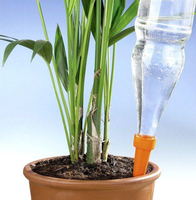 Nawilzacz Glebowy Do Podlewania Roslin 6 Sztuk W Komplecie Wenko Plants Green