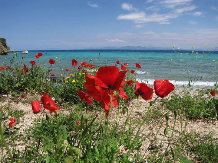 spring in Lefkada island, Greece