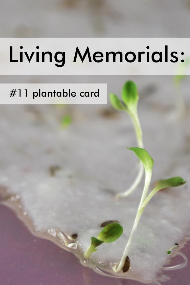 how to make a memorial card