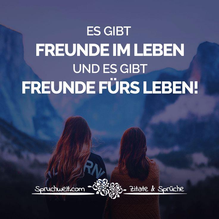 Freunde & Sprüche über Freundschaft - {{news_title::174}