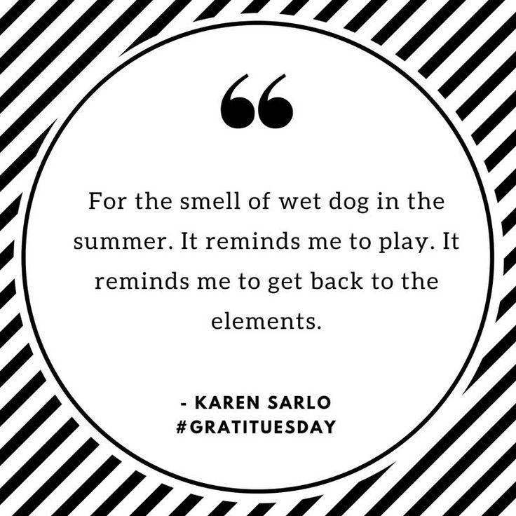 Wet Dog - https://bysarlo.com/wet-dog/