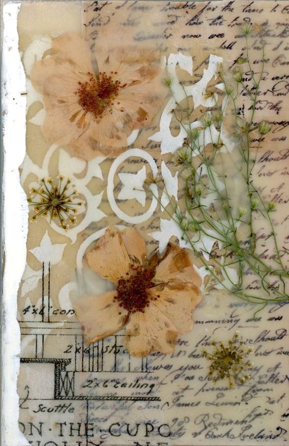 mixed media art nature collage collage on canvas by twocooltexans