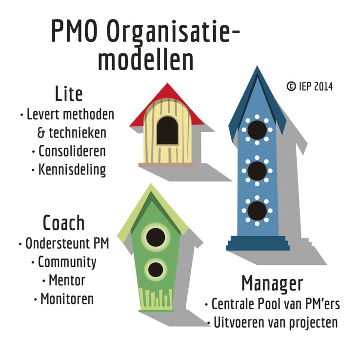 Best Project Management Office Pmo Images On