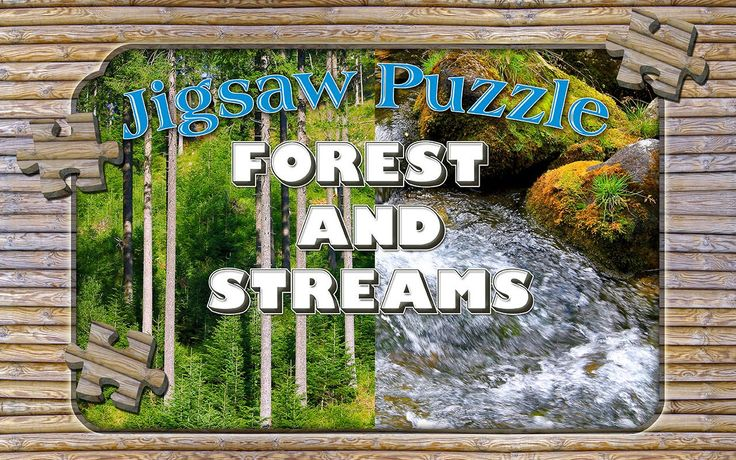 Forest Streams puzzle chest