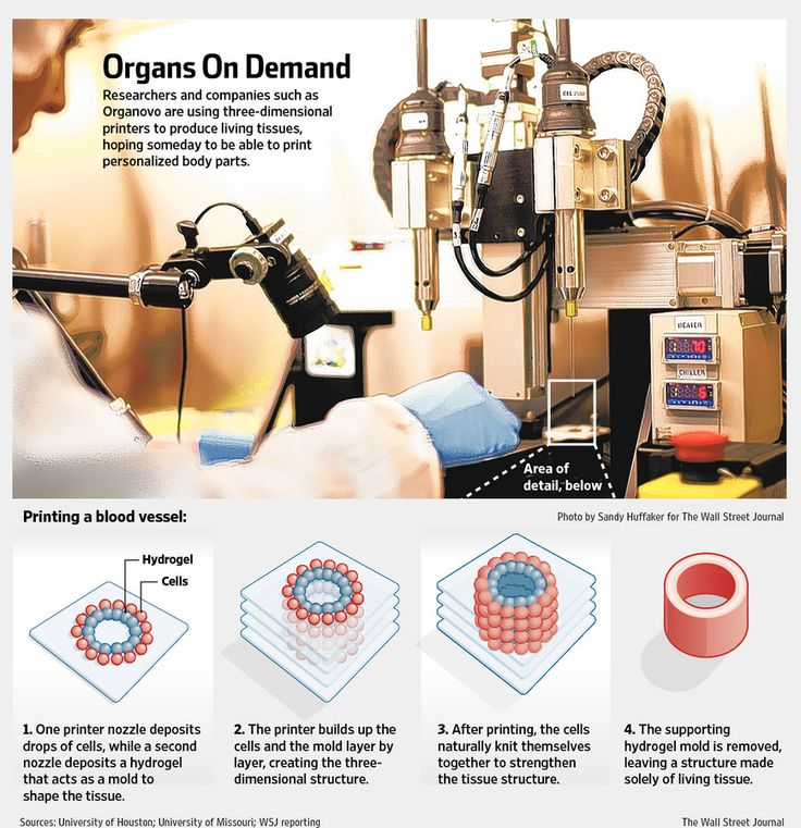 60 best Bioengineering images on Pinterest Science, Molecular - biomedical engineering job description