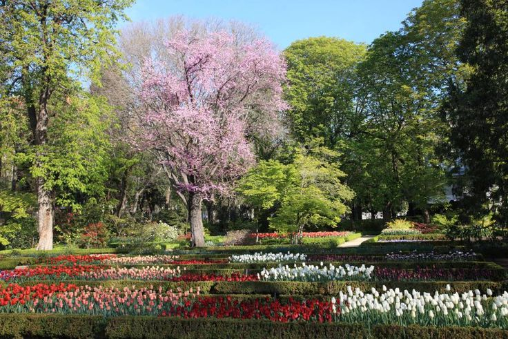 1000 ideas sobre jard n de tulipanes en pinterest for Aparthotel jardin de recoletos madrid