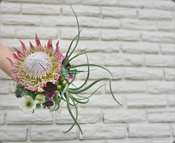 Bridal bouquet with king protea and airplant