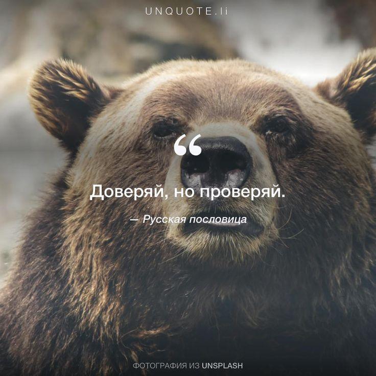 "Русская пословица ""Доверяй, но проверяй."""