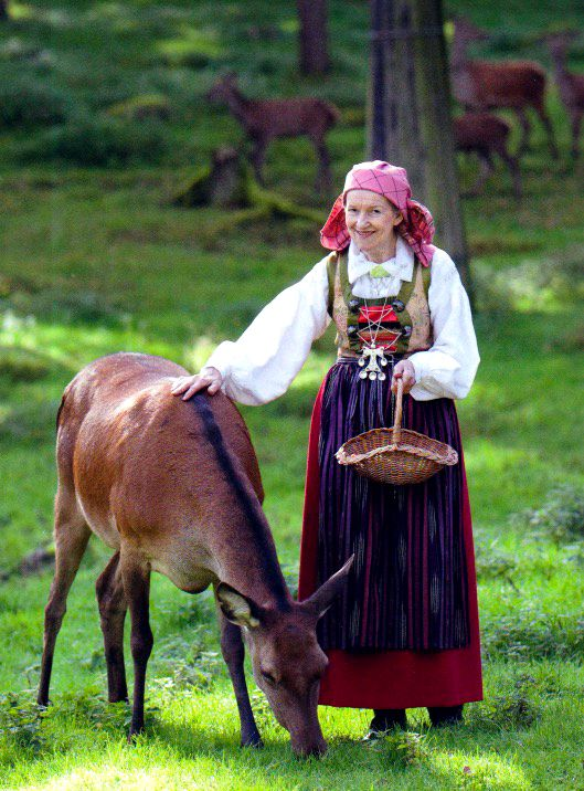 "Swedish folklore | Bara Härrad, Skåne (Scania) | The folklore costumes in scania is strongly characterized by the renaissance, the farmers consciously hang on to this style and the costumes differs distinctly from the rest of Sweden. The bodice is in brocaded silk and is kept together with a silver chain over the decorated breast piece (""bröstlappen"") 