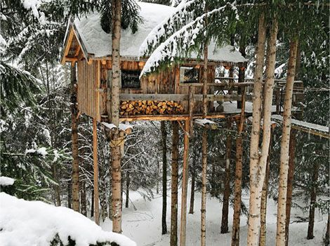 Cabin / tree house.: Dreams Houses, Winter Trees, Trees Houses, Tree Houses, Snow, Winter Cabins, Treehouse, Places, Logs Cabins