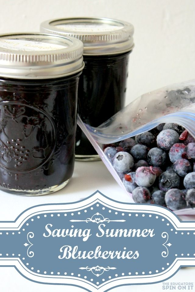 Saving summer with blueberry smoothie packs for the freezer - veganize with soy yogurt and agave