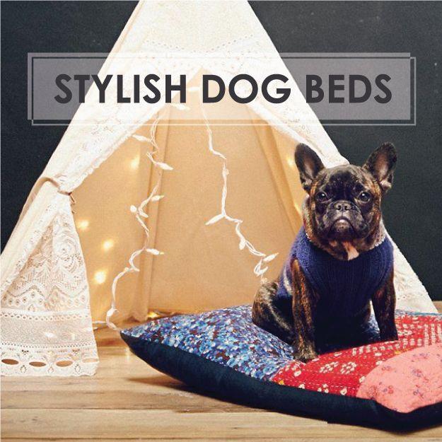 81 Best Dog Beds Images On Pinterest Dog Beds Doggies