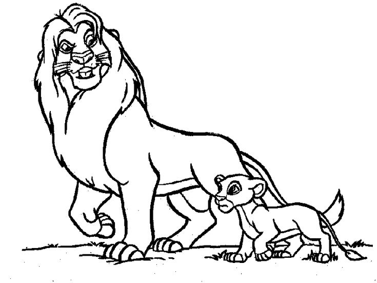 Lion Coloring Pages Realistic Lion With Baby Lion Zoo Animal
