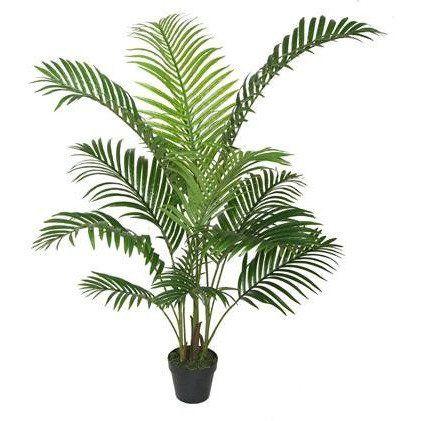 120cm Areca Palm With Black Plastic Pot-green & Black