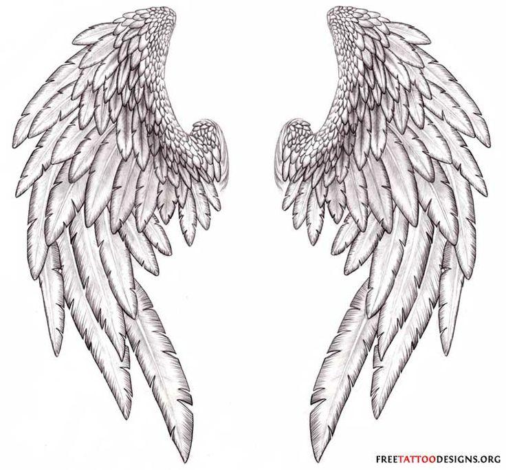 Best 25+ Angel wings pictures ideas on Pinterest | Angel wings ...