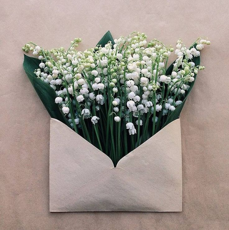 Anna Remarchuk_Flowers Bouquets in Vintage Envelopes_#Envelopes_Series