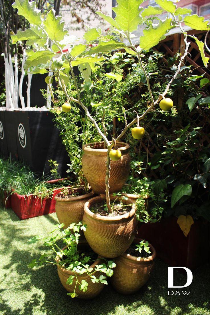 Un martes perfecto para conocer nuestro jardin #Gardening #SuTerceracasa https://www.pinterest.com/suterceracasa/ddw-gardening/