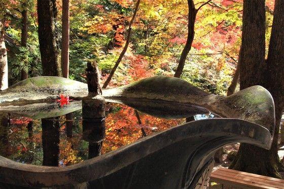 Autumn leaves kabusanji Osaka Japan