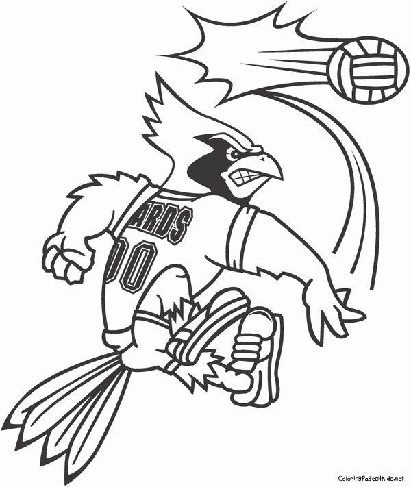 Arizona Cardinals Coloring Page Inspirational Cardinals Football Coloring Pages At Getcolorings In 2020 Bee Coloring Pages Coloring Pages Baseball Coloring Pages