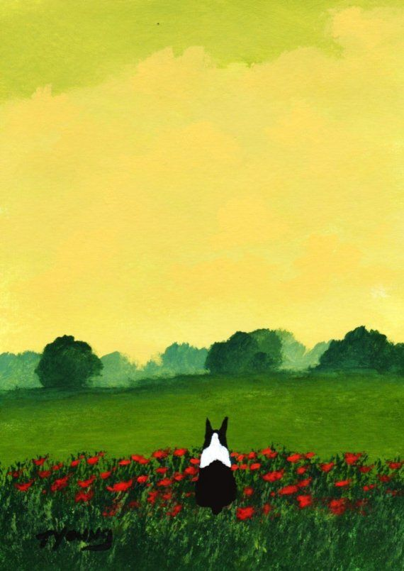 Boston Terrier Dog FRENCH POPPIES Reproduction Art by ToddYoungArt