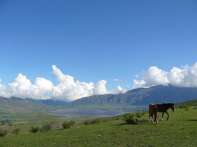 Tafi del Valle - #Tucuman - Argentina /cc @viajaportupais @tucumanturismo