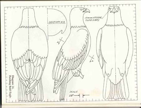 wood carving patterns for beginners - Google Search