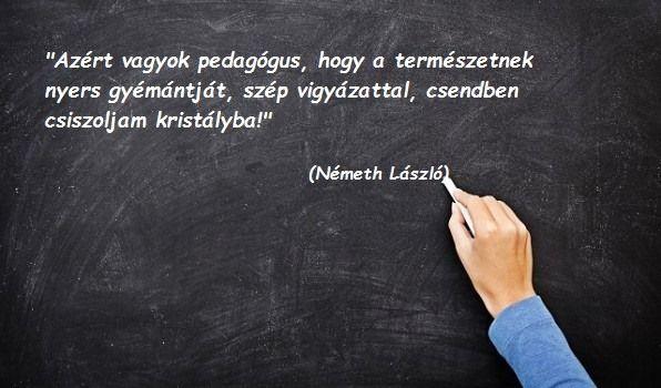 Németh László idézet a pedagógiáról. A kép forrása: Kincsek és kacatok óvodáknak, szülőknek, gyerekeknek