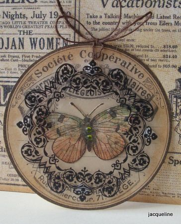 Using an acetate circle over the butterfly