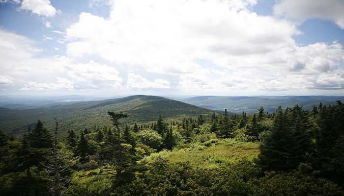 Ever heard of the Mount Greylock scenic byway? Today on MassFinds, we dive into the road that runs through one of Massachusett's most prominent landmarks!