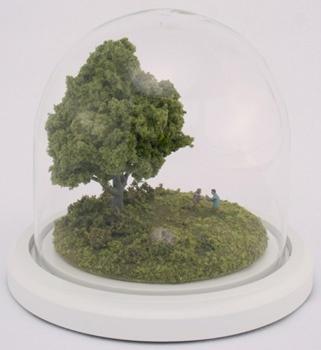 Terrarium sculptures -- Thomas Doyle
