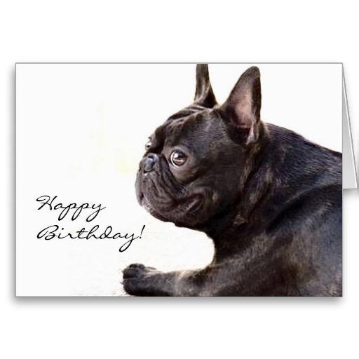 Happy Birthday French Bulldog card