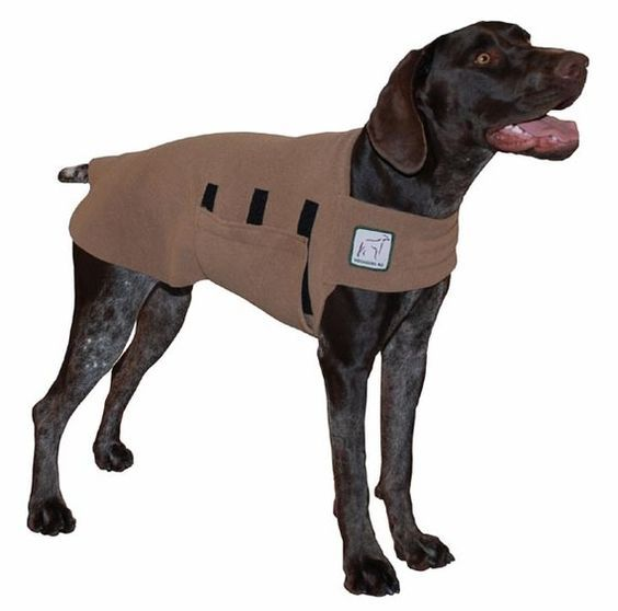 GERMAN SHORTHAIRED POINTER Tummy Warmer by VoyagersK9Apparel