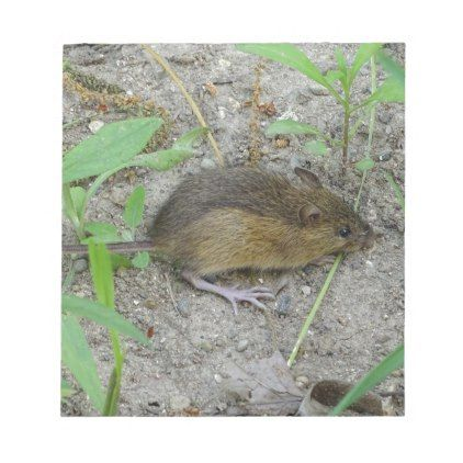 Mouse Notepad - image gifts your image here cyo personalize