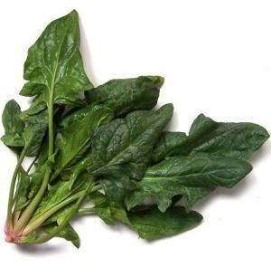 Como plantar espinafres - 7 passos - umComo