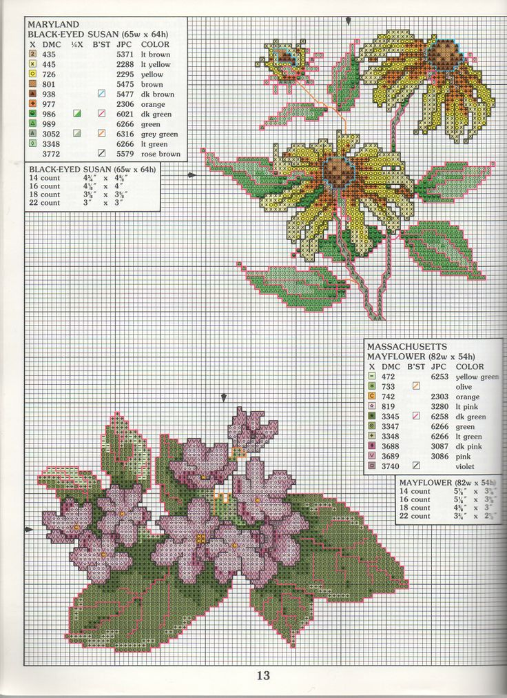 STATE FLOWERS (bbj0076)  Maryland & Massachusetts 1/1