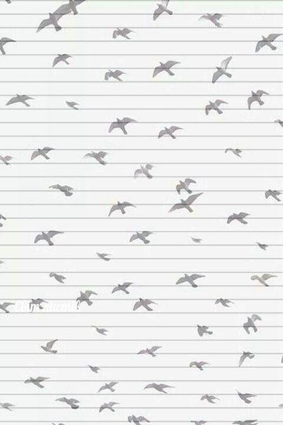 Бумага для писем – 1 038 фотографий