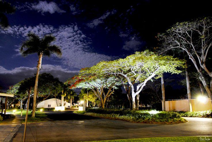 Beautiful Sheraton Resort Fiji - Night Photography