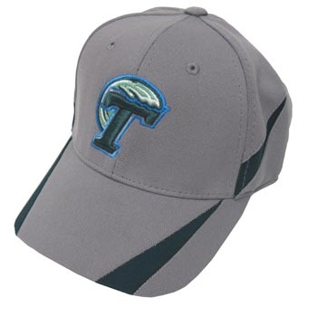 17 best images about new tulane items on logos