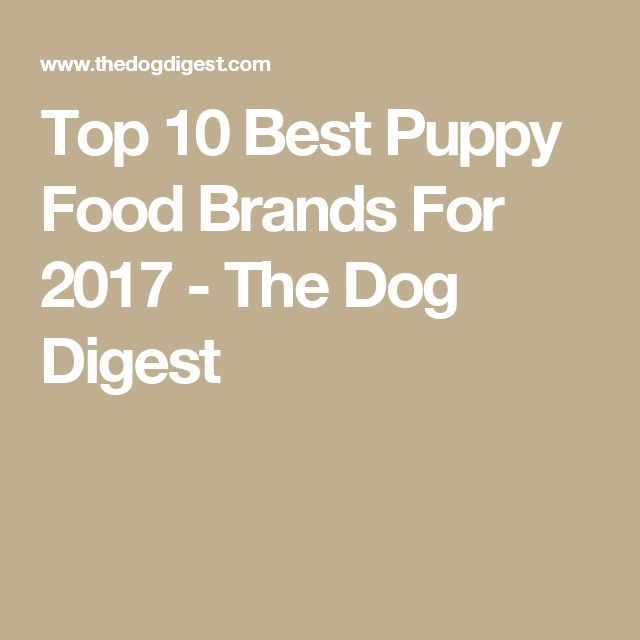 Top 10 Best Puppy Food Brands For 2017 - The Dog Digest