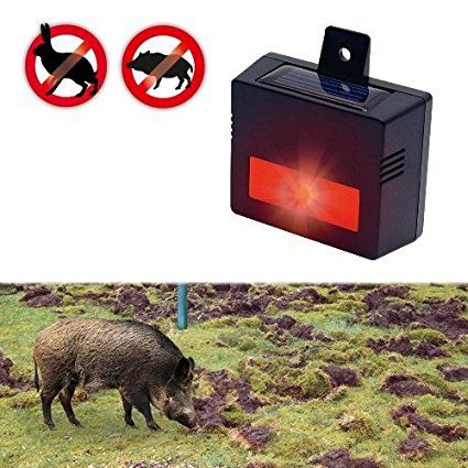 Amazon.es: Gardigo solar repelente de animales salvajes ahuyentador electrónico contra los animales salvajes en su propiedad contra conejos ciervos rugido tejón mapache zorro