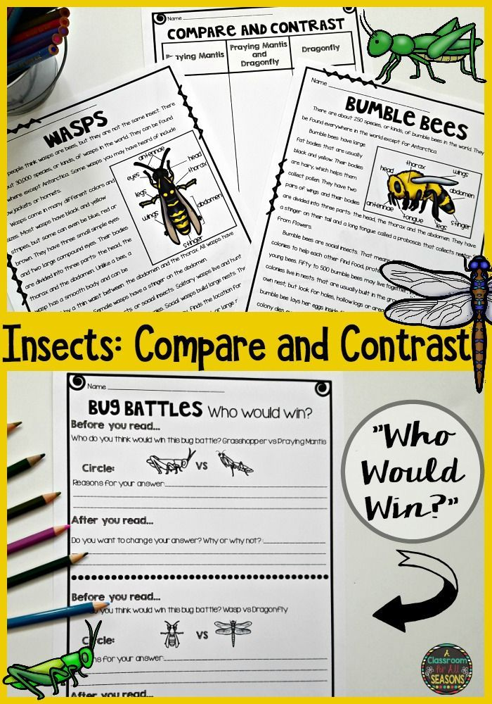 "These Compare and Contrast reading passages focus on insects and bugs. It includes graphic organizers, reading comprehension and a fun ""Who Would Win?"" activity."