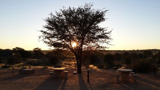 View of the sunset from Twee Riveren in the Northern Cape.