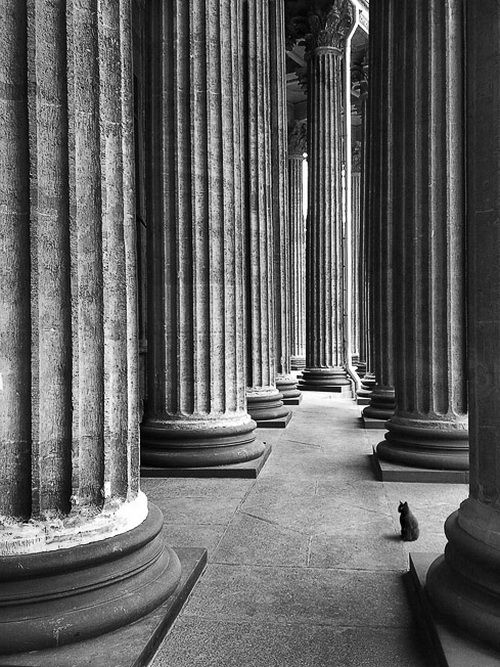 WowPhotos, Architecture Pattern, Black And White, Beautiful Buildings, Photography Inspirationart, Zeev Kurlianchick, Kurlianchick Photography, Black Cat, Street Photography