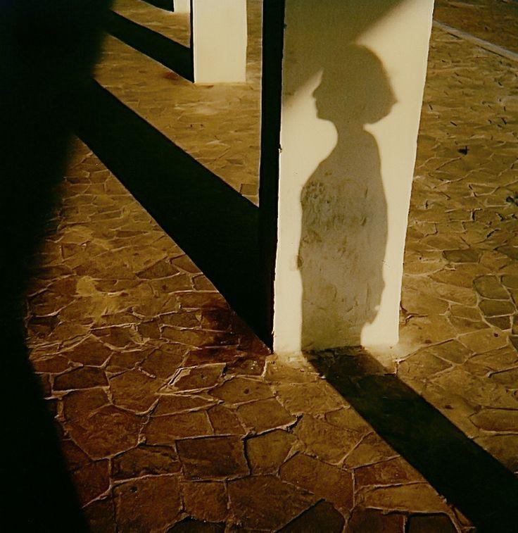 Polaroid sx 70 by Augusto De Luca. 6