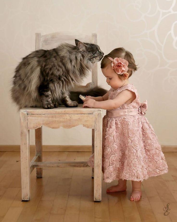 #oneyearold #babygirl #1st #birthday #mainecoon #cat #photoshoot